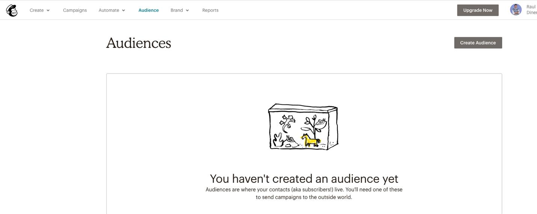 imagen de la audience de mailchimp