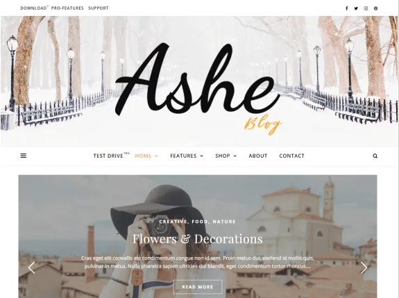 Ashe imagen de plantilla de wordpress