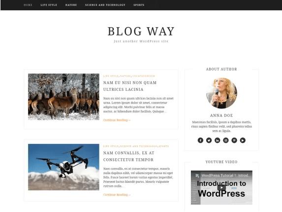 Blog way imagen de plantilla de wordpress